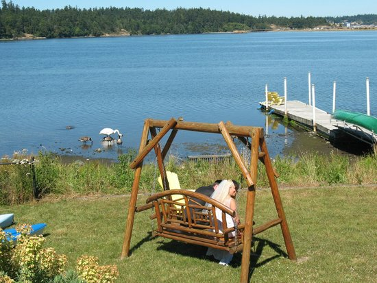 Birds of a Feather Ocean Lagoon Bed & Breakfast & Vacation Rental: Swing with a view & free canoes
