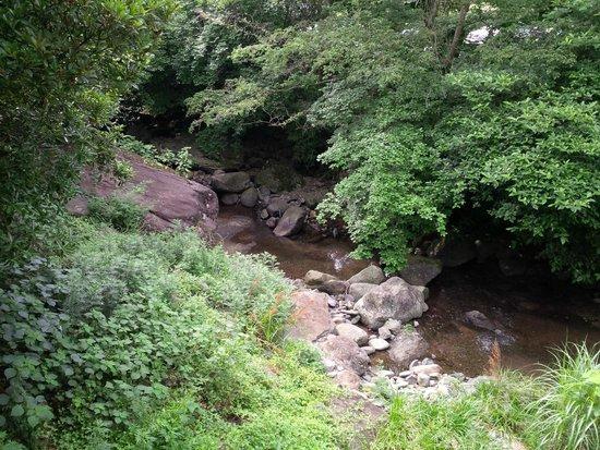 Saga Ureshino Spa Taishoya Shiibasanso: The stream that runs by the hotel.