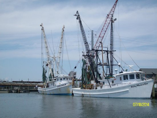 Charleston Outdoor Adventures: The Shrimp Boats on the water
