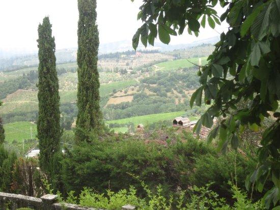 Villa Le Barone: view from room 3