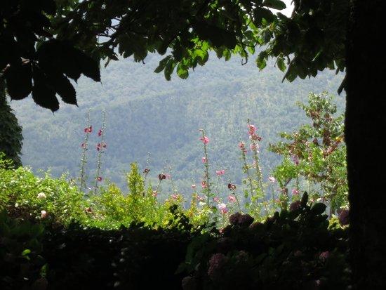 Villa Le Barone: Garden and views