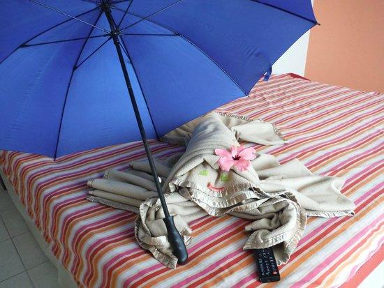 Hotel Playa Cayo Santa Maria: Our cute little blanket lobster