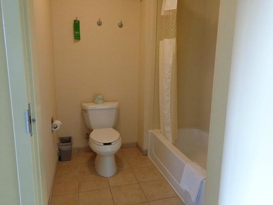 Hampton Inn & Suites Seal Beach: bath