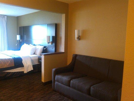 Comfort Inn Dayton / Miller Ln. : Awesome