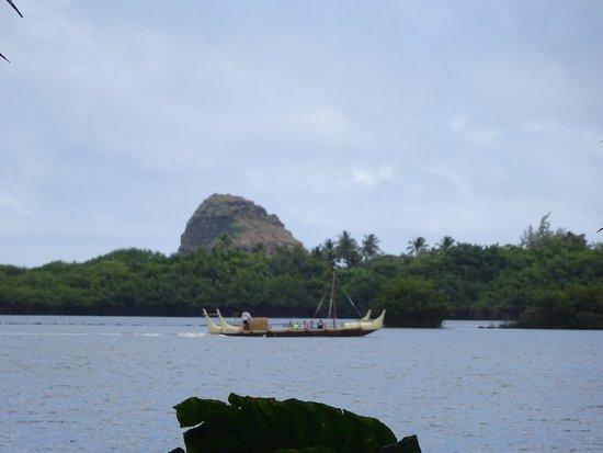 Tropical Farms Macadamia Nut Farm and Farm Tour: boat
