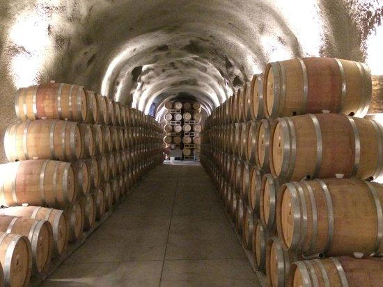 Just Inn: Justin Wine Cellar