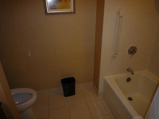 Crystal Gateway Marriott: Bath