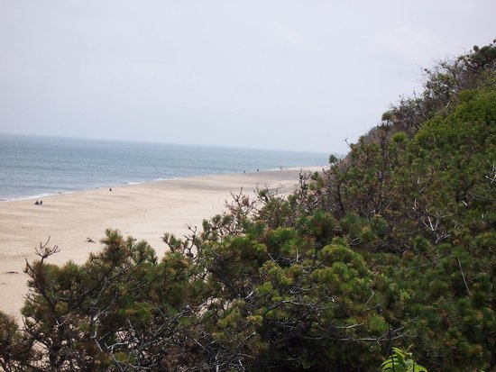 Cape Cod Scenic Tours : Nauset Lighthouse Beach