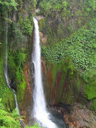 Catarata Del Toro Adventures: Catarata del Toro waterfall