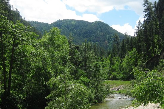 Spearfish Canyon Scenic Byway: Canyon View