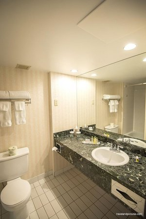 DoubleTree by Hilton Hotel Gatineau-Ottawa: Clean bathroom