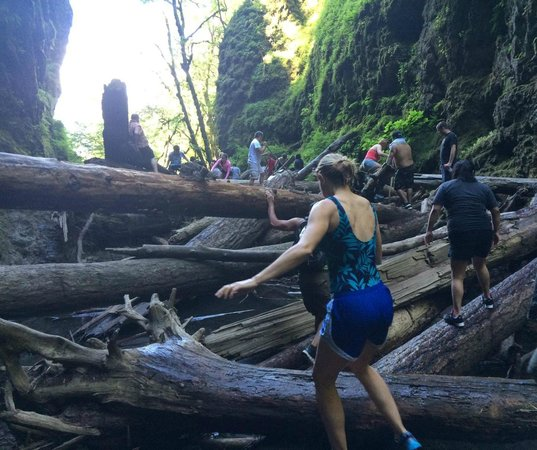 ‪‪Oneonta Gorge‬: Climbing the log jam‬
