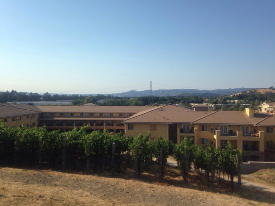 The Meritage Resort and Spa: View of the hotel from vineyard