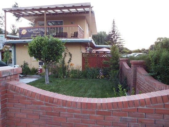 Lakeside Villa Inn & Suites: Apple tree