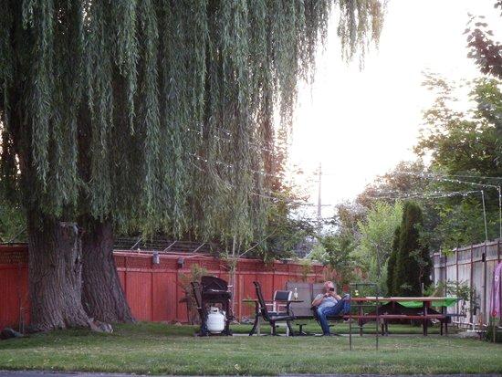 Lakeside Villa Inn & Suites: Back yard BBQs