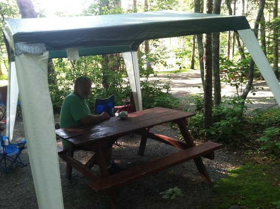 Hadley's Point Campground : Large sites & nicely wooded area!