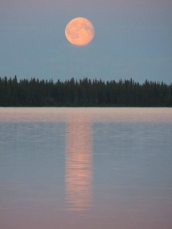 Willow Lake B&B : Supermoon over Willow Lake