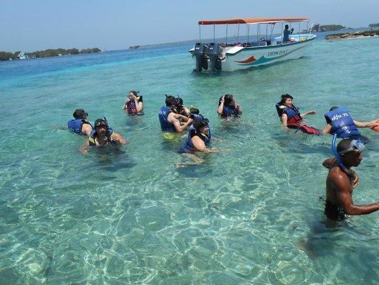 Tours en Islas del Rosario: Na hora do mergulho