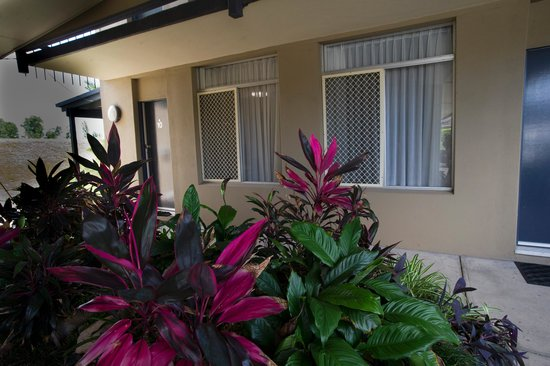 Mid City Motor Inn: Garden