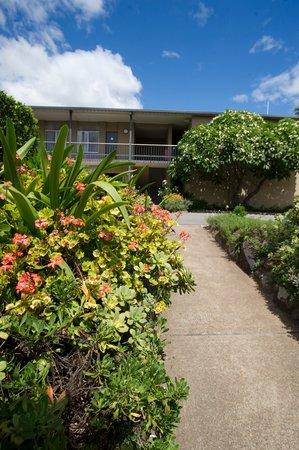 Mid City Motor Inn: Garden Path