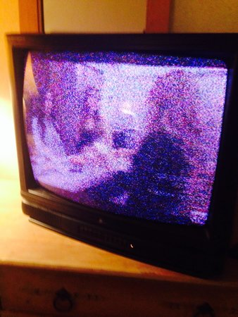 Hotel Don Fernando de Taos : Static on every channel