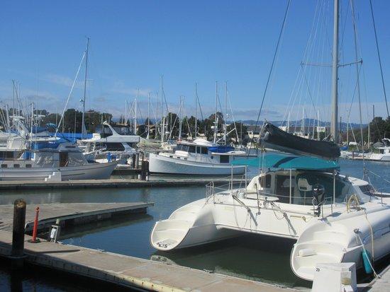 Posey Tube: Alameda, Ca - Ballena Bay Yacht Harbor