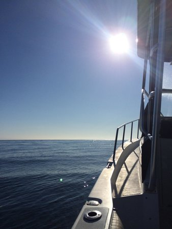 Outer Island Expeditions : Calm water