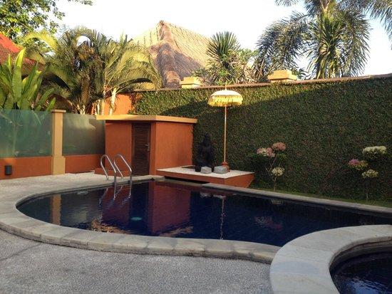 Bali Alizee Villas : Pool