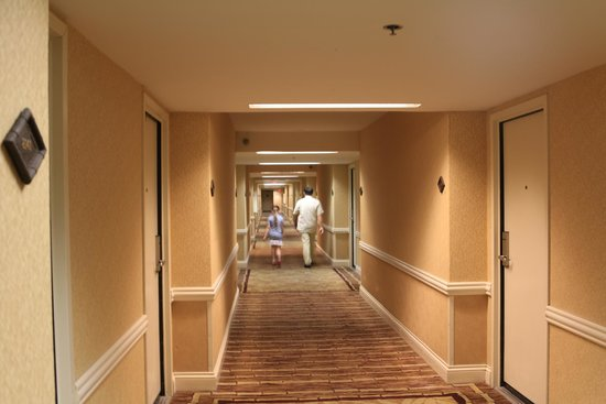 Flamingo Las Vegas Hotel & Casino: Коридор