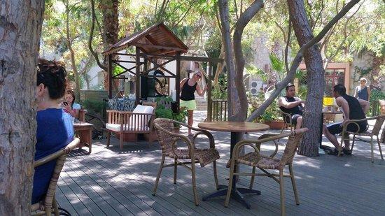 Green Beach Resort: Tea garden