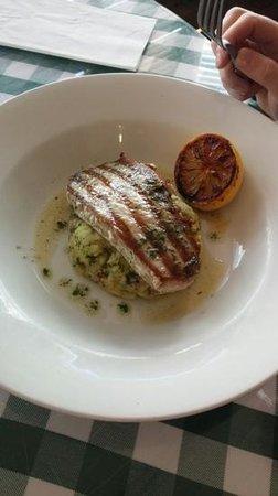 Golden Grid : The Tuna Steak