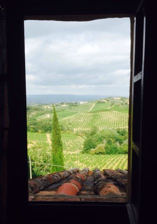 Agriturismo Paterno: The view