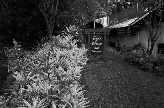 Akiko's Buddhist Bed and Breakfast: path to the Temple of Gratitude