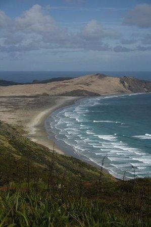 Explore - Dune Rider Cape Reinga: Cape Reinga