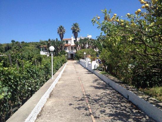 Residence San Domenico: Il residence