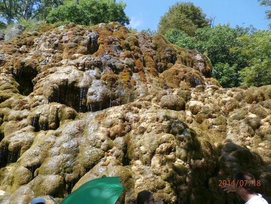 Bateau à Roue Royans Vercors: roche en tuf