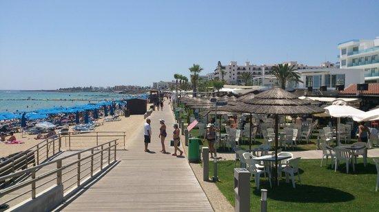 Tsokkos Beach Hotel: Пляж