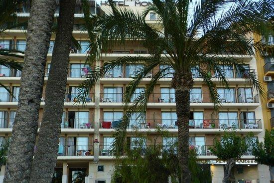 Hotel Montemar: El hotel visto desde el Parque Elche
