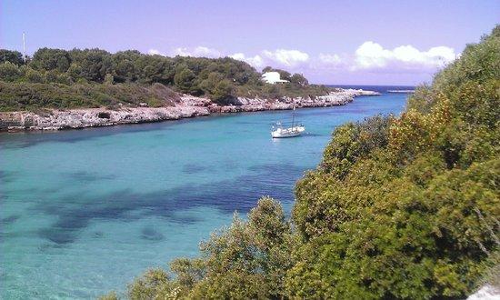 Santandria Playa Hotel : View of the cove