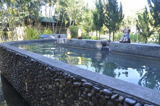 Pai Hotspring Spa Resort: Mineral Pool
