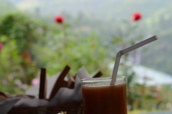 Ramboda Falls Hotel: View from the restaurant