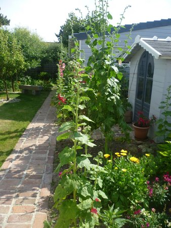Villa Fleur d'ecume : Le jardinet