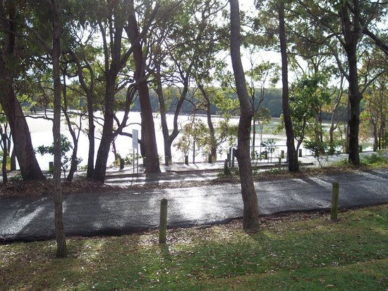 North Coast Holiday Parks Moonee Beach : View from our site