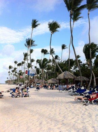 Grand Palladium Punta Cana Resort & Spa : beach at the hotel