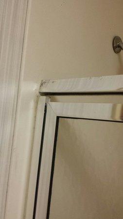 Homewood Suites Richmond Airport: Broken shower stall door