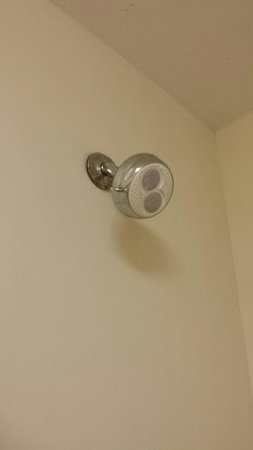 Homewood Suites Richmond Airport: Old shower head that sprays and dribbles
