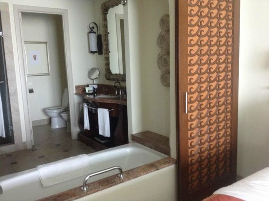 Atlantis, The Palm : bathroom and loo