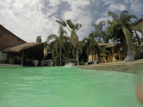 Pinjalo Resort Villas: Pool
