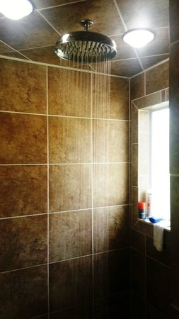 The Worthington Guest House: Large waterfall shower
