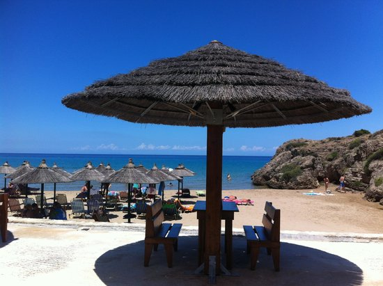 Plaka Beach: Vy mot havet